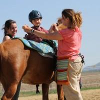 Formation – Utilisation du cheval comme modalité de réadaptation